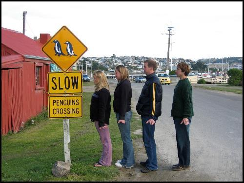 students mimicking penguin crossing road sign